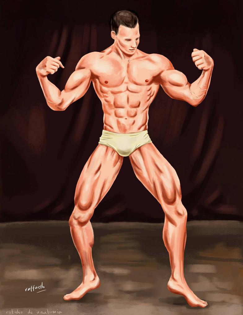 Anatomy by 07raffaello