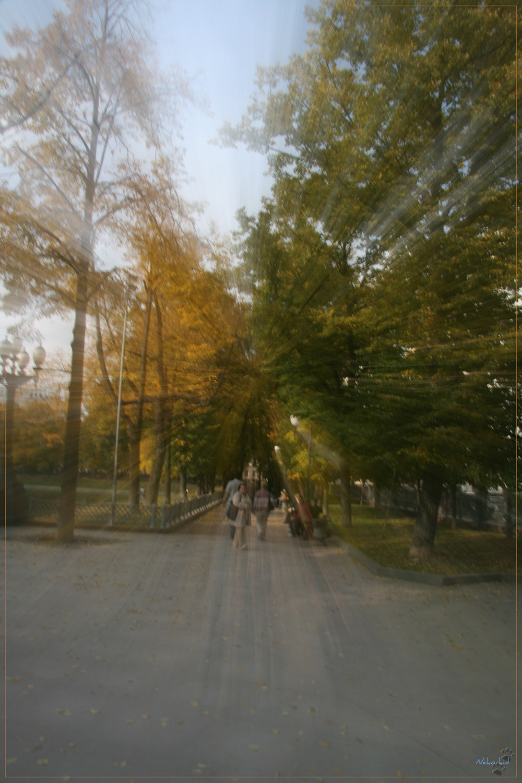 Autumn games 4 by Kittenboy