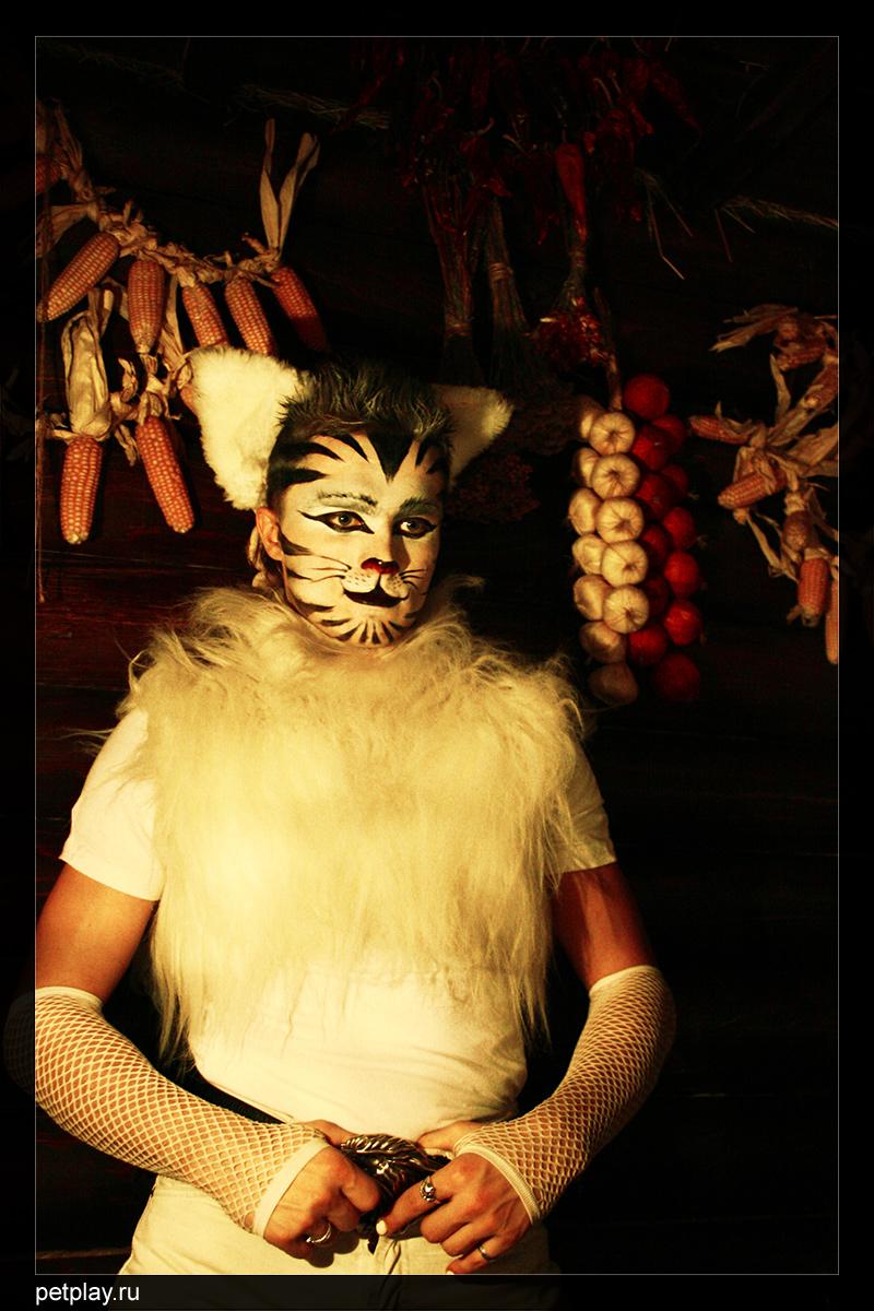 Folkolore tiger 1 by Kittenboy