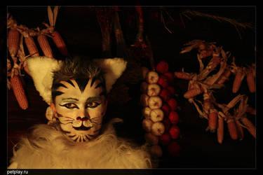 Folkolore tiger 3 by Kittenboy