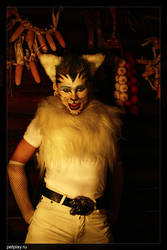 Folkolore tiger 4 by Kittenboy