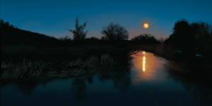 Nightwater