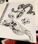 Sketchbook Page One