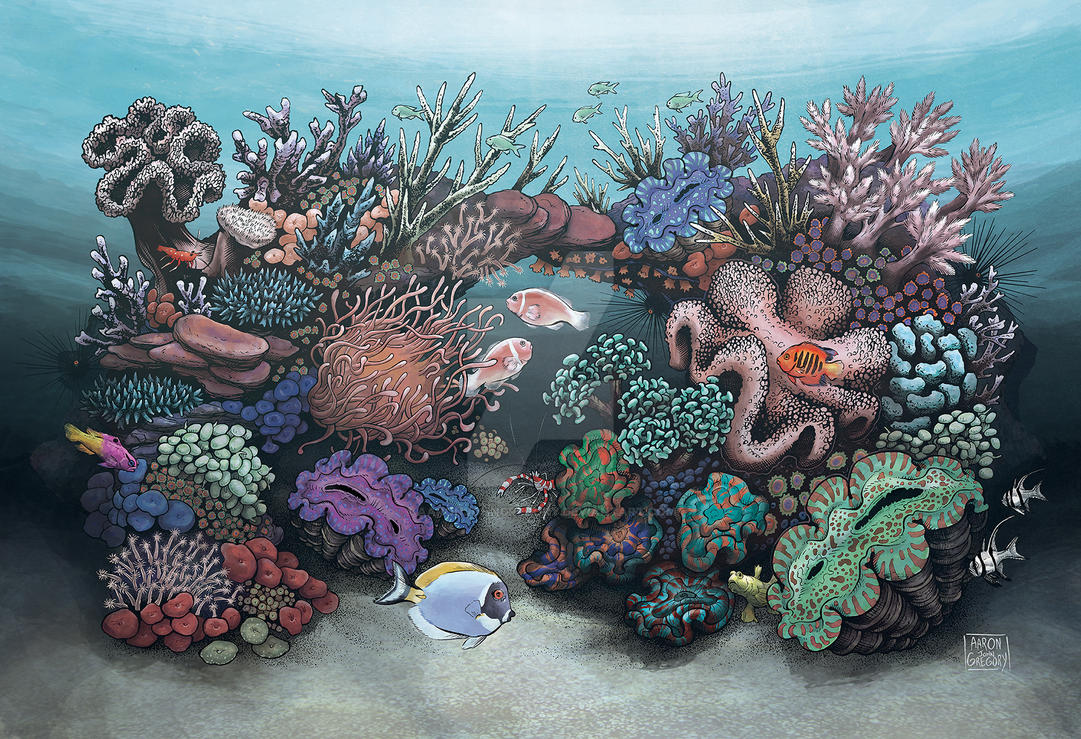 Marine Reef Aquarium by aaronjohngregory