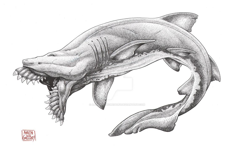 Edestus Giganteus by aaronjohngregory
