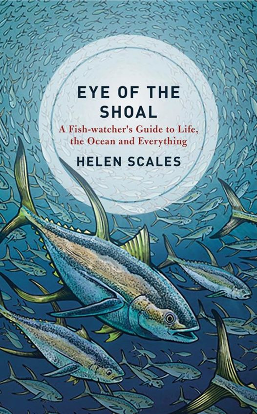 Eye of the Shoal - cover art by aaronjohngregory