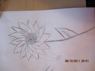 Another random flower sketch :P by metalstalkophile14