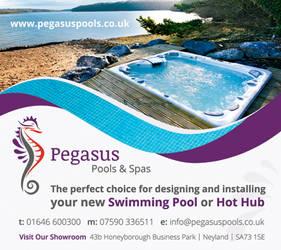 Pegasus Pools by lille-eskimit