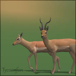 Antelope impala by marcpardo