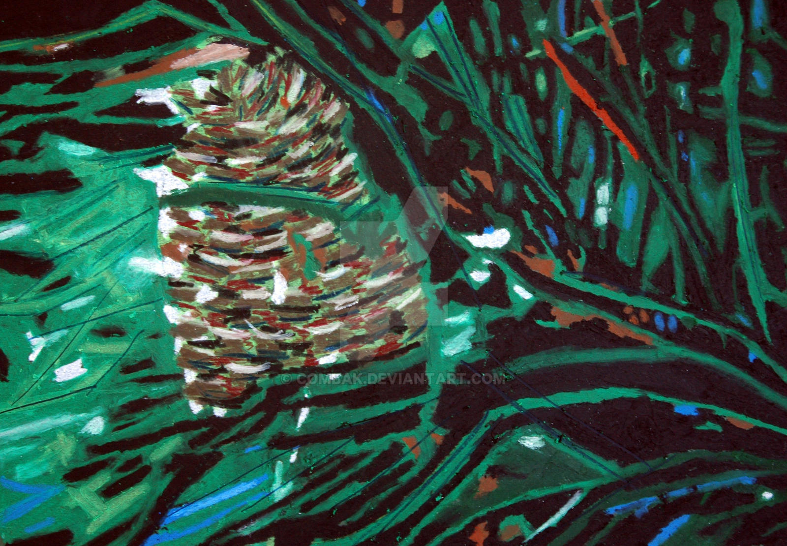 Pine Cone by Combak