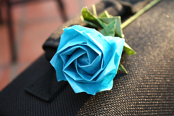 Blue Rose 1 by mellysa