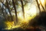 Misty forest study by au-lait08