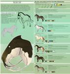 Sava'aggans breeds - Silura by WoC-Brissinge
