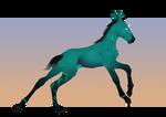*SOLD*Nagian foal 11