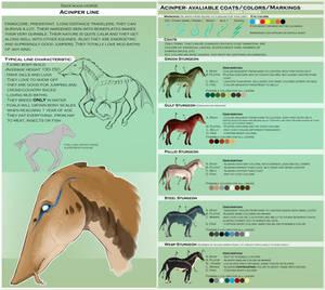 Sava'aggans breeds - Acinper by WoC-Brissinge