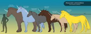 Nagian unicorns - Basic summary