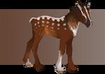 *SOLD*Kelephan/Wooly foal 1 by WoC-Brissinge