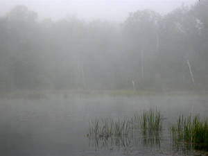 Foggy Lake   3 By Mamat06 by WoC-Brissinge