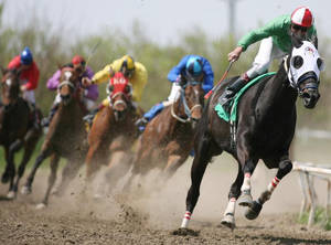 Todays Equine Horse Racing.jpg.opt790x586o0,0s790x by WoC-Brissinge