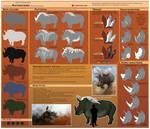 Raynoceros - subspecies ref. sheet by WoC-Brissinge