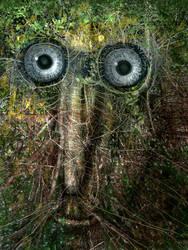 Tree Guardian II by FrodoK