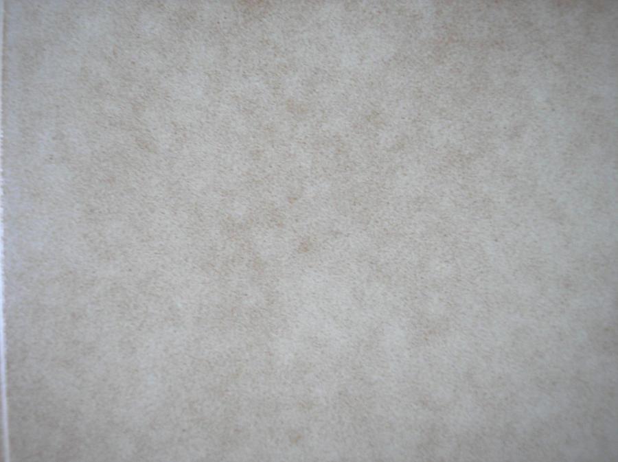 Texture 12 by agosbeatle-stock