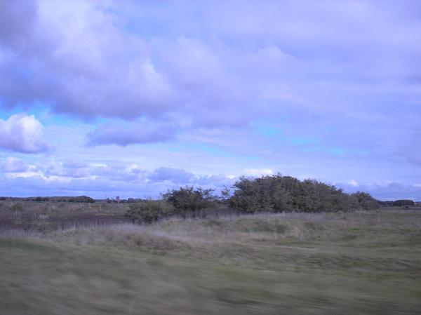 fields 5 by agosbeatle-stock