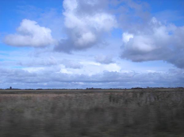 fields 6 by agosbeatle-stock