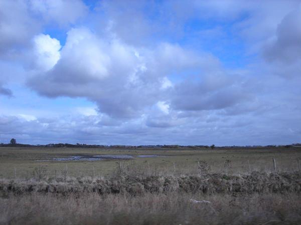 fields 7 by agosbeatle-stock