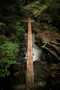 Ridley Creek Trail Footbridge
