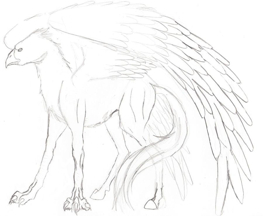 buckbeak coloring pages - photo#8