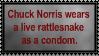 Chuck Norris Fact 2 by Sergeant-McFluffers