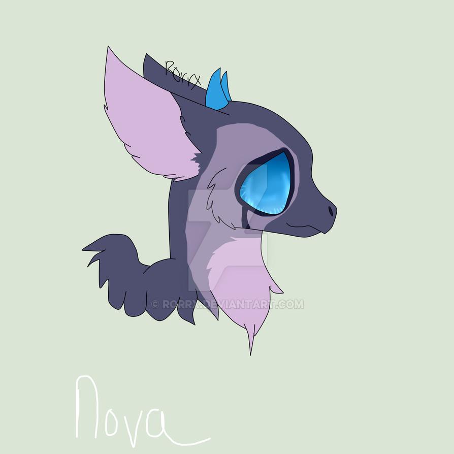 nova {AT} by Rorrx