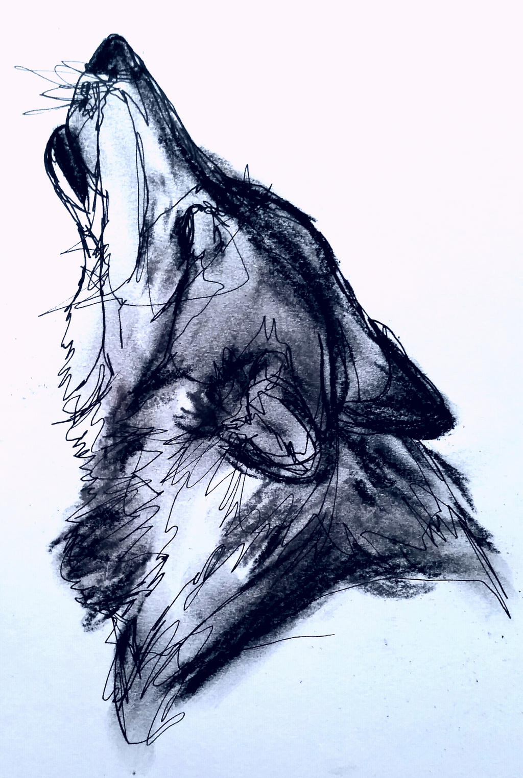 howling wolf head 5 by whydoyoucaresomuch on DeviantArt