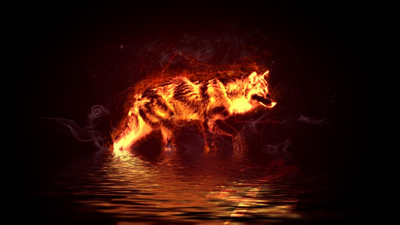 Fire Wolf by Hemamm on DeviantArt