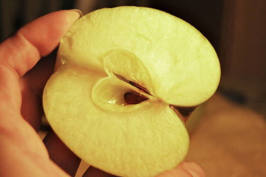Heart of an apple