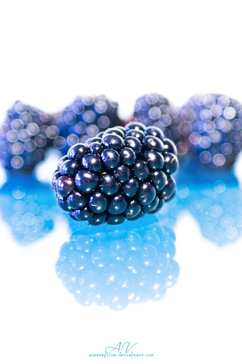 Shiny blackberry by alexskyline