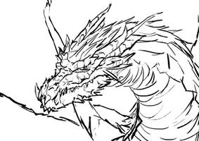 Dragon lines by KawaINDEX