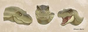 Random Rex