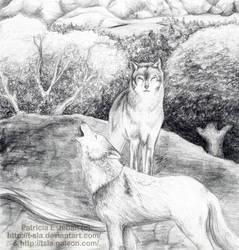 Wolves by T-SLA