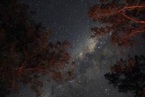 *StarScape~01* by CrimsonVampiress
