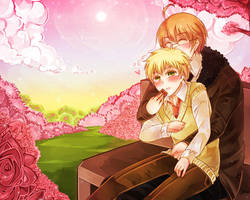 APH: Happy Valentine 12 by RuminE