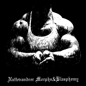 Nattevandrer's Profile Picture
