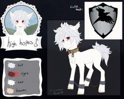 High Hopes reference sheet
