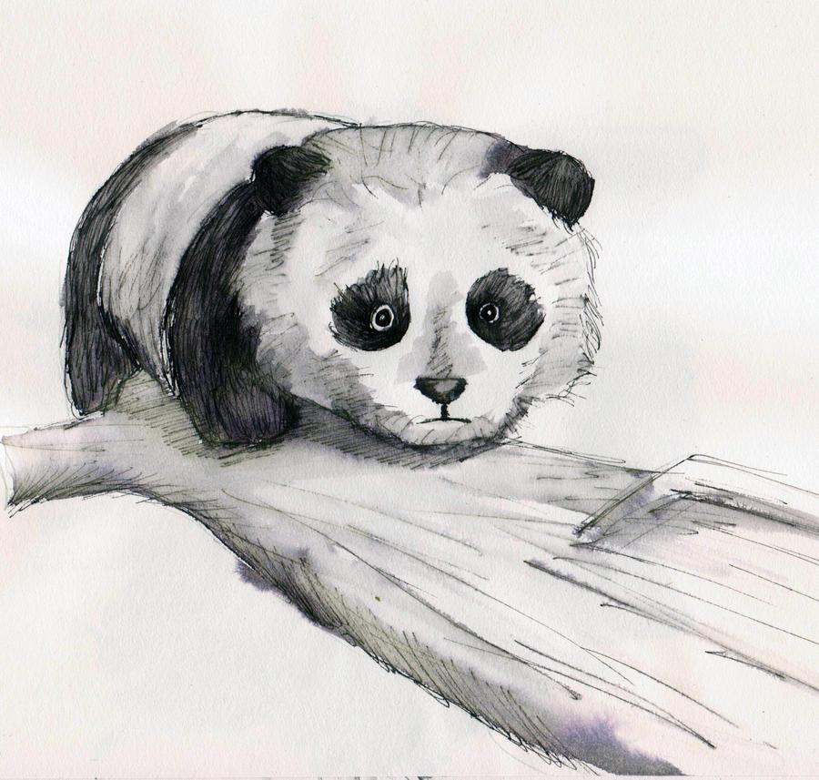 животные рисунки карандашом легко панда фото