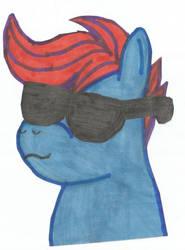 Random Pony0002