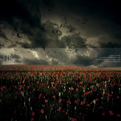 Crimson Fields by slight-art-obsession