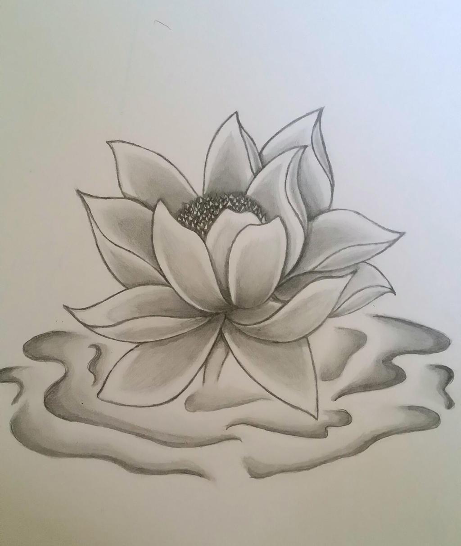 lotus flower by Ink side on DeviantArt