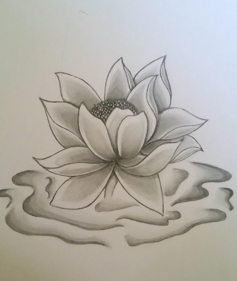 Lotus flower by ink side on deviantart lotus flower by ink side mightylinksfo