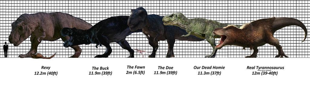 Jurassic Park Tyrannosaur Size Chart By Brenton522 On Deviantart